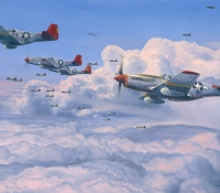 FIGHTING RED TAILS
