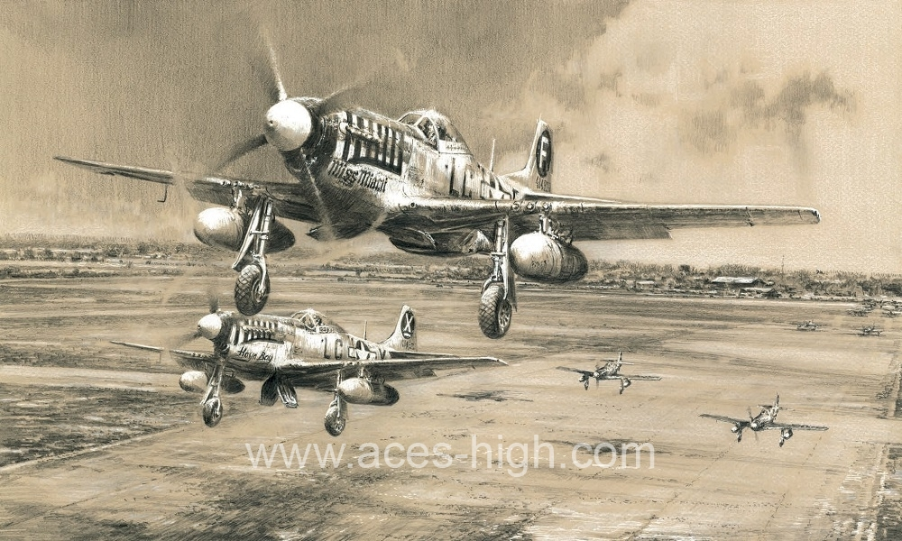 Headlong into the Clash by Robert Taylor signed by Mustang /& Luftwaffe Pilots