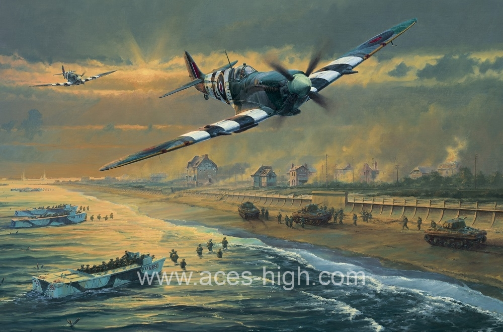 JUNO BEACH The D Day 65th Anniversary Portfolio