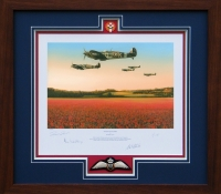 FIELDS OF GLORY <br>Framed Collectors Piece
