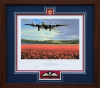 FOR FREEDOM <br>Framed Collectors Piece