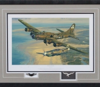 SALUTE TO THE BRAVE <br> Framed Collectors Piece